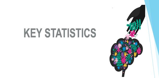 Key Statistics Image