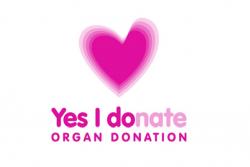 Organ Donation Image